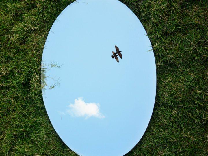 L'esprit et les perceptions